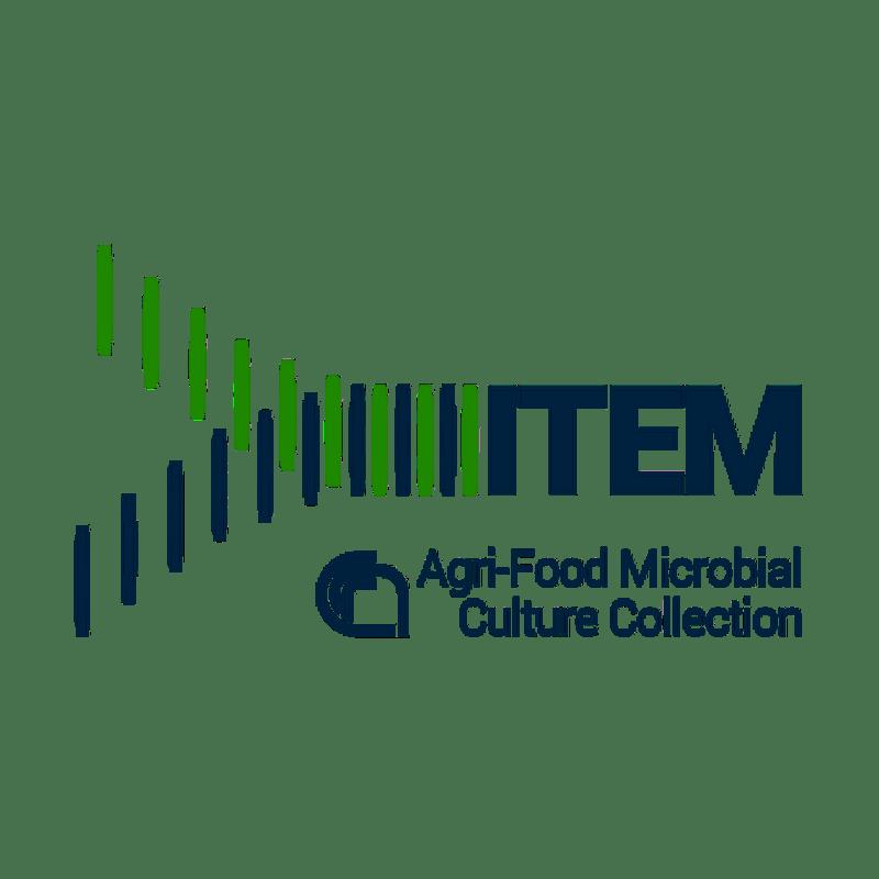 IT_ITEM_1